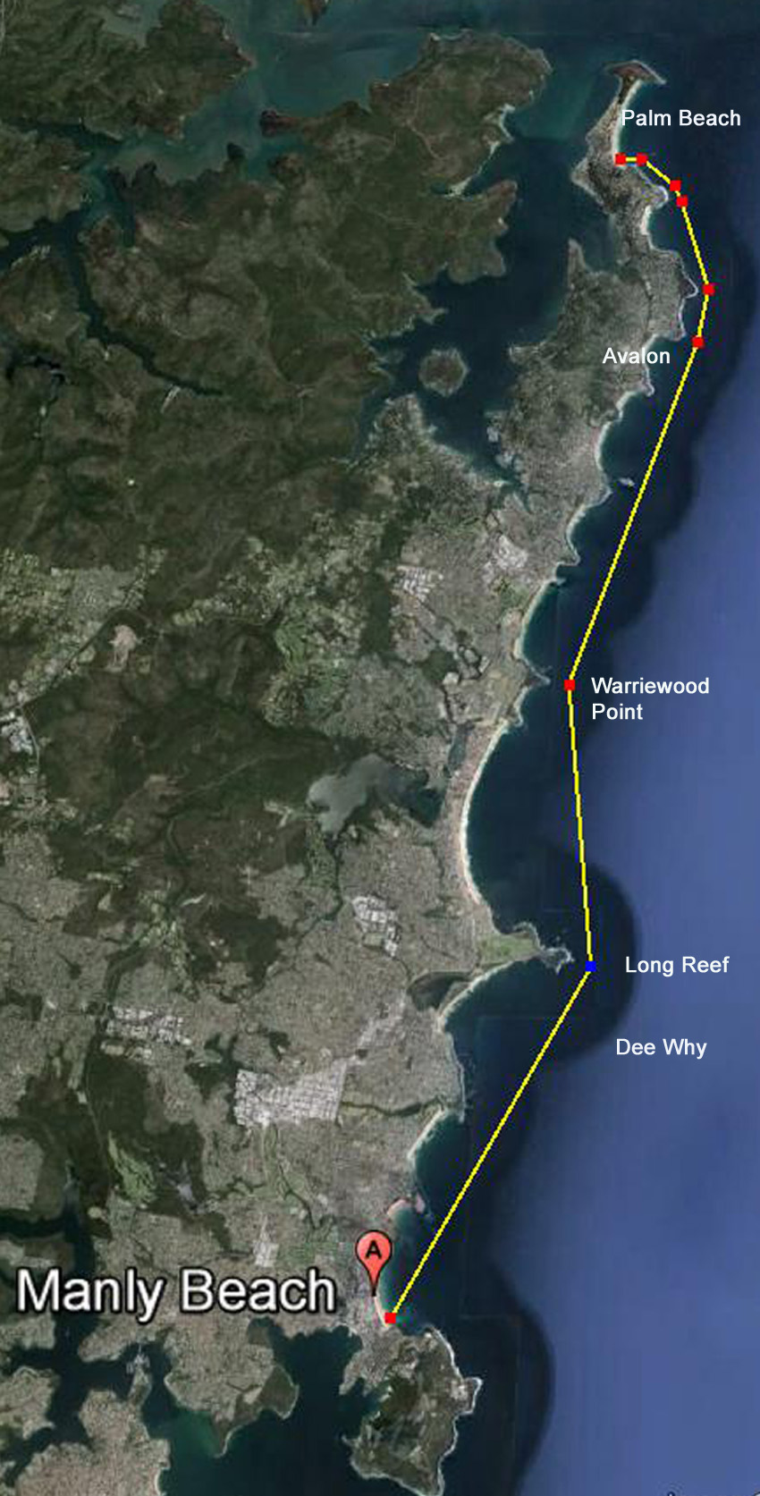 The Conquering Pain Marathon Swim. Palm Beach to Manly , Sydney, Australia. Propsed course