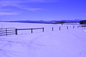 Near northern boundary, Yellowstone National Park, Montana